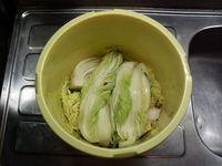 100212hakusai3.jpg